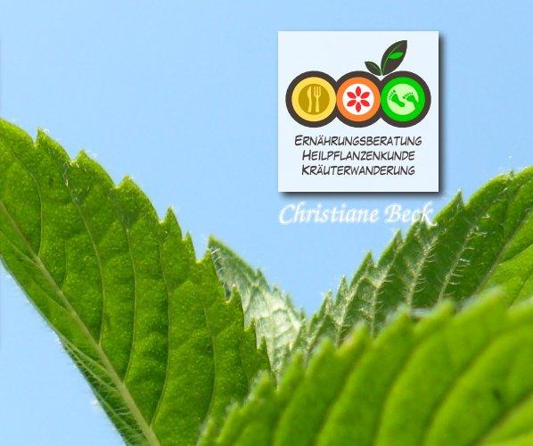 Ernährungsberatung Christiane Beck – Impressum